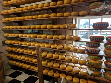 We got to taste dozens of kinds of Dutch cheese. We liked them all!