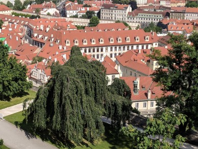 Even new town Prague is old to us!